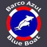 Tenerife blue flag certified whale watching tours