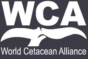world cetacean alliance partner in Tenerife Costa Adeje